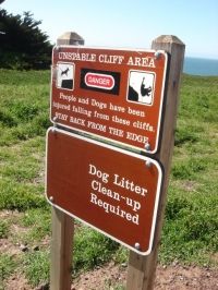 people and dogs come here to play and fall off cliffs