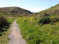 the start of the kehoe beach trail
